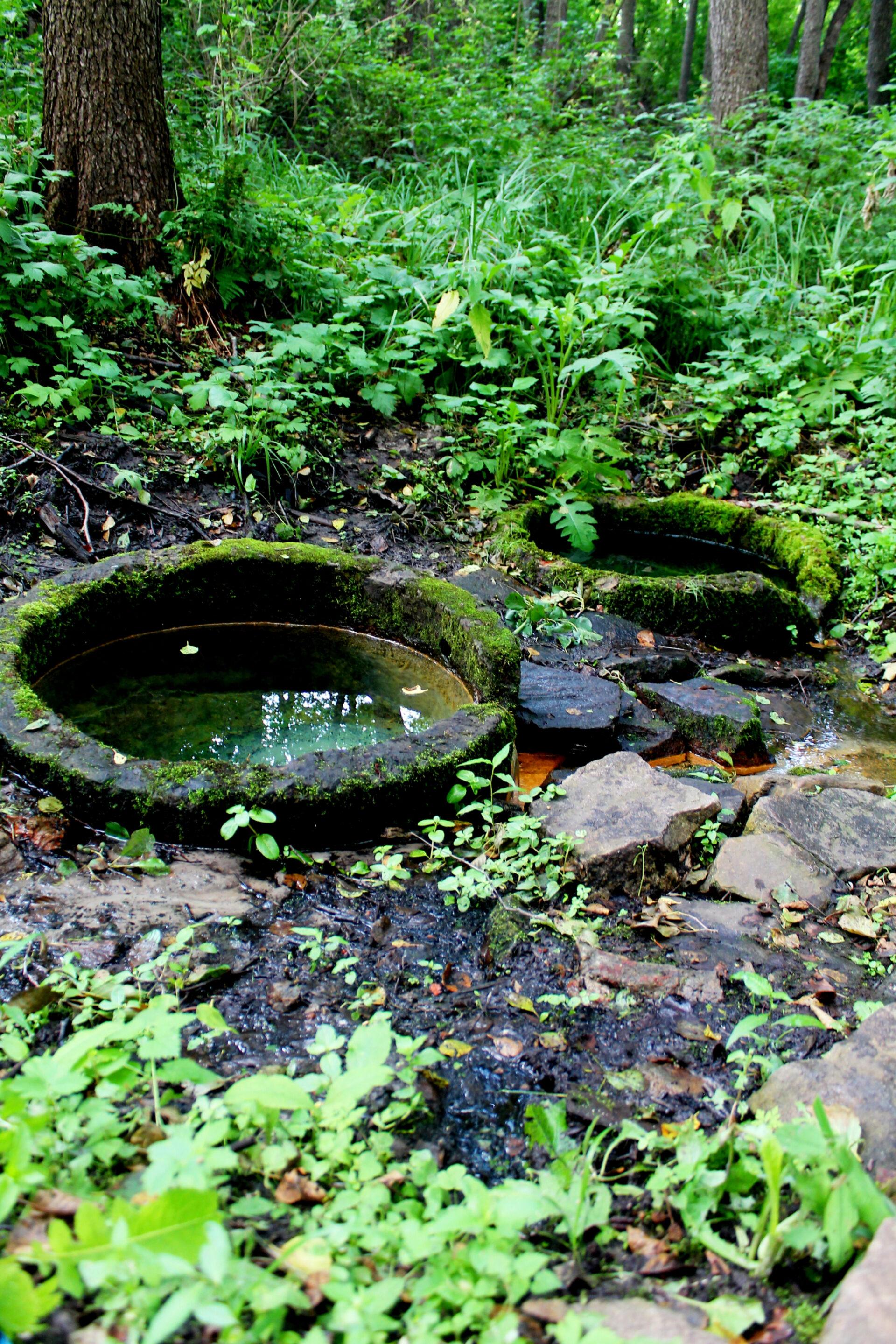 Родники сЖивой иМертвой водой. (Харьковская область, Люботин)