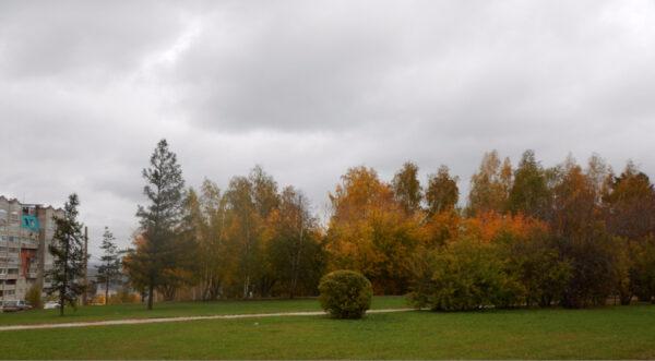 Осень вСФУ