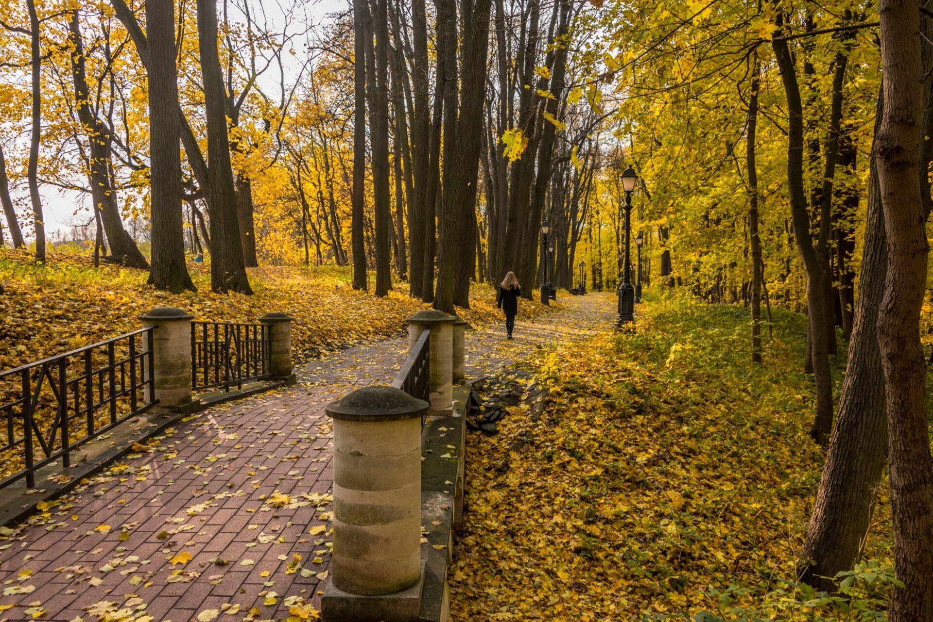 Москва. Октябрь. Парк Царицыно.
