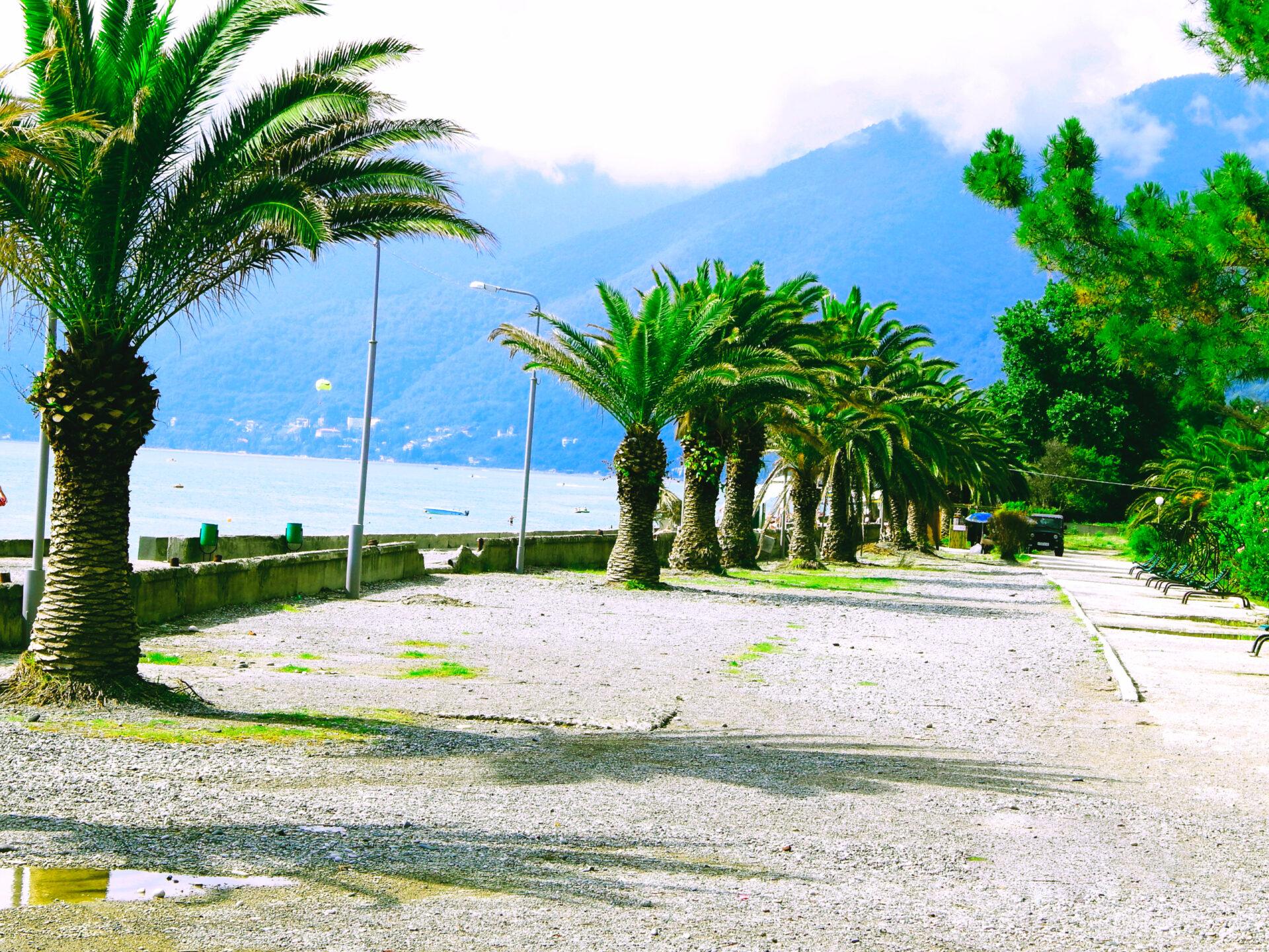делать жесткий новые гагры фото города и пляжа одно мест, где