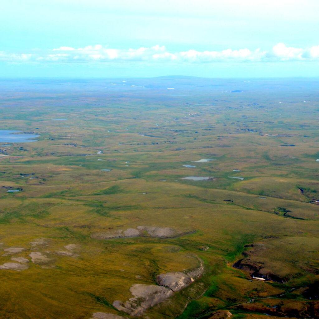 Арктическая Припять или «лежбище моржей»